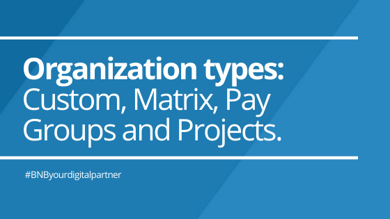 Organization types: Custom, Matrix, Pay Groups and Projects.