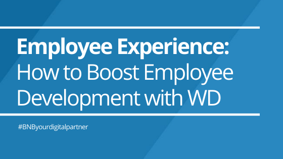 Employee Experience: How to Boost Employee Development with Mentorship Programs in Workday